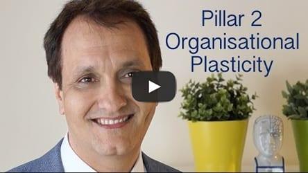 Pillar-2-Organisational-Plasticity